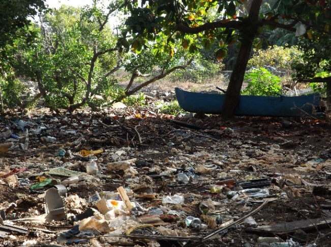 Baromètre-des-déchets-La-mangrove-de-Mtsapéré-nest-plus-quune-immense-décharge
