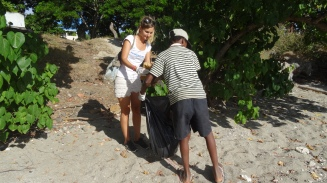 Nettoyage Badamiers (2)