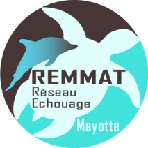 REMMAT_Sticker_Marron_Final